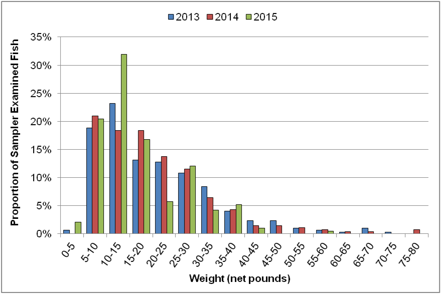 Figure 5. Weights (net pounds) of sampler examined Pacific halibut from 2013-2015. Data are from CRFS.