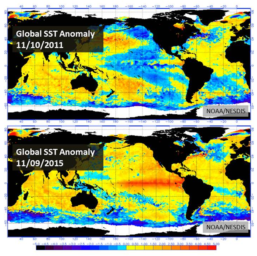 Figure 2: SST Anomaly from 2011 and 2015