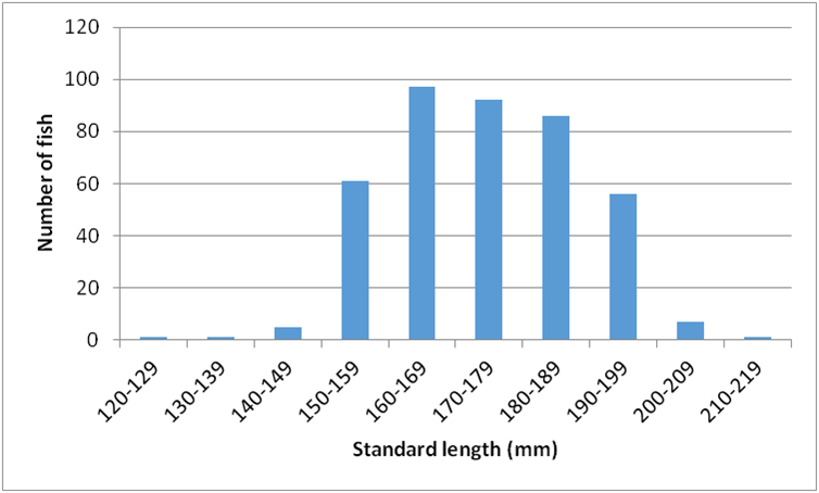 Figure 1:  Length frequency of Humboldt Bay herring 2015-16.